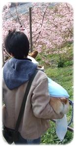 まつだ桜まつり&ふれあいどうぶつ村【22.2.22】NO8