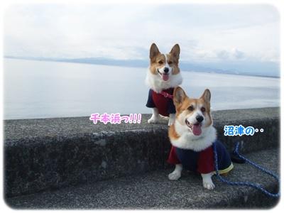 新春ドライブ【23.1.3】 NO1
