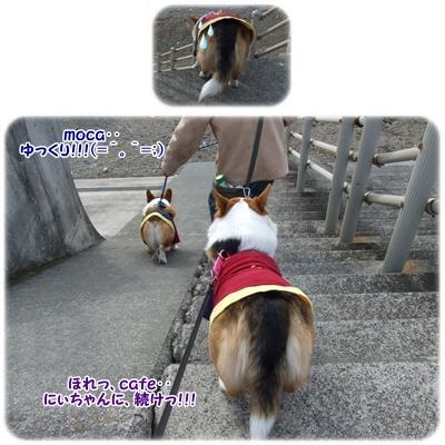 新春ドライブ【23.1.3】 NO3