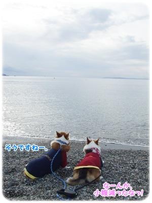 新春ドライブ【23.1.3】 NO7