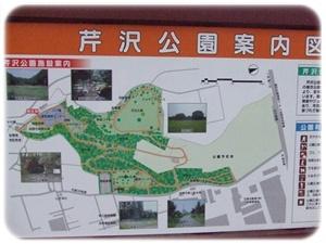 芹沢公園【23.1.13】 NO2