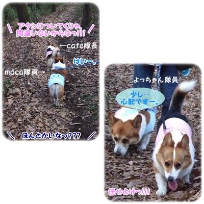 芹沢公園【23.1.13】 NO6