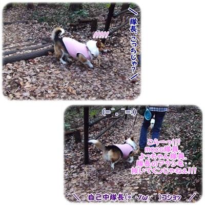 芹沢公園【23.1.13】 NO7