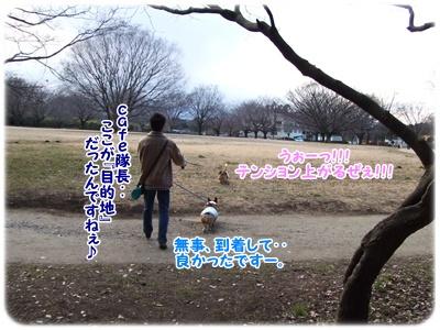 芹沢公園【23.1.13】 NO8