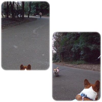 芹沢公園【23.1.13】 NO12