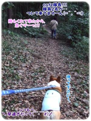 芹沢公園【23.1.13】 NO13