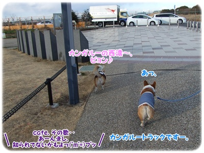 芹沢公園・続編【23.1.16】 NO9