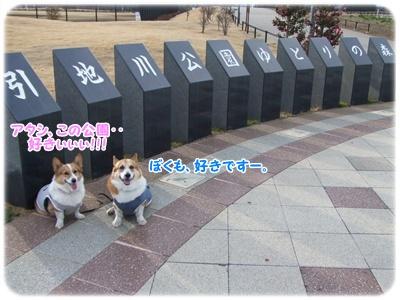 芹沢公園・続編【23.1.16】 NO10