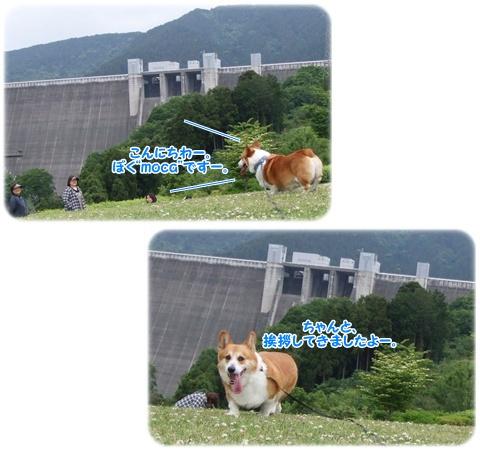 あいかわ公園【23.5.26】 NO3