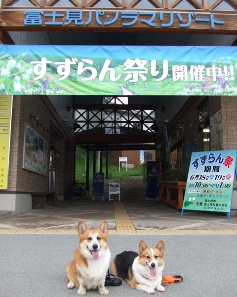 富士見パノラマリゾート すずらん祭り【23.6.16】 NO1