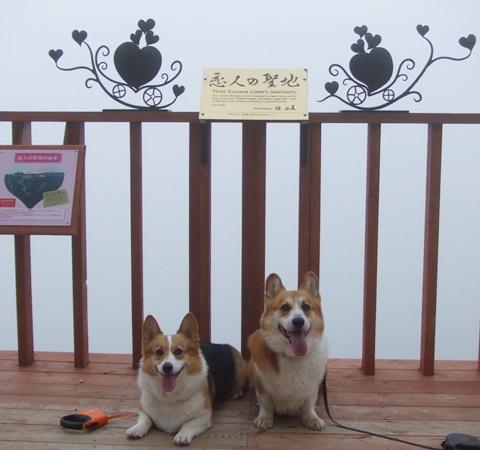 富士見パノラマリゾート すずらん祭り【23.6.16】 NO7