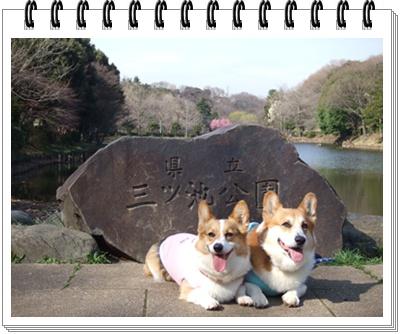 県立 三ッ池公園【22.3.17】NO1