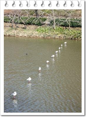 県立 三ッ池公園【22.3.17】NO5