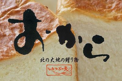 おから角食(大)