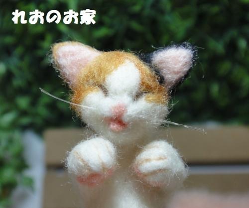 ねんね三毛猫4