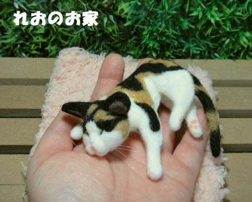 ねんね三毛猫5