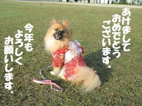 001繝シ繧ウ繝斐・謖ィ諡カ_convert_20130101151055