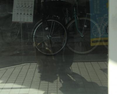 002繝シ繧ウ繝斐・_convert_20130210223407