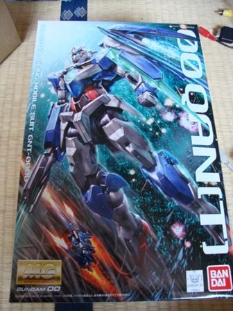 DSC03111_20110103235052.jpg