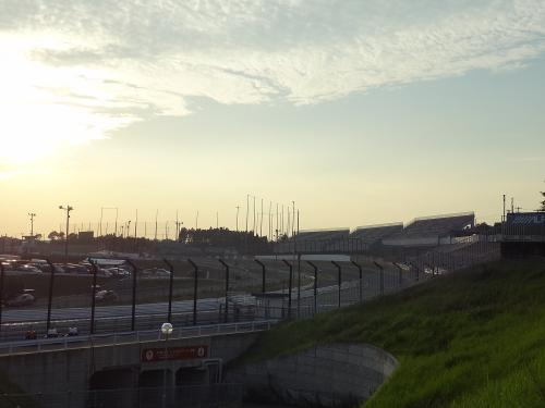 WTCC 131