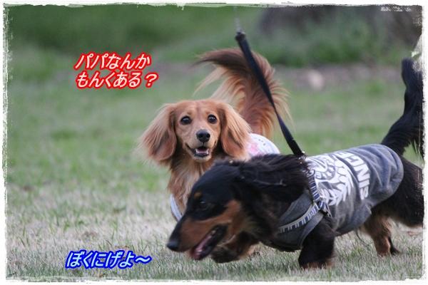 IMG_1568-2.jpg