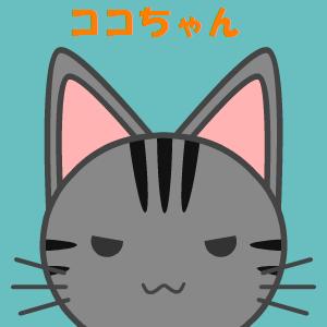 ココちゃん