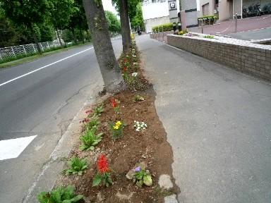 2010_0609(002).jpg