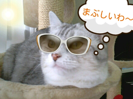 fc2_2013-01-03_14-58-28-971.jpg