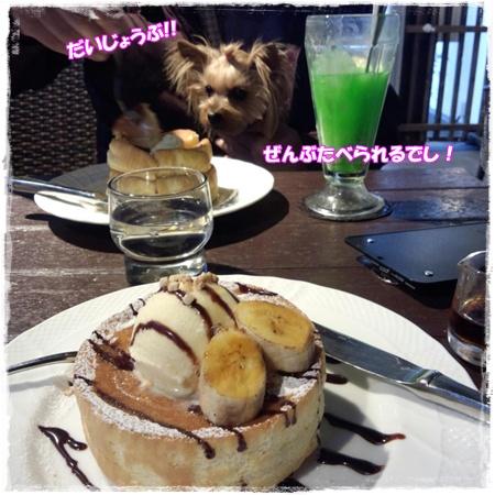 2013-02-11-16-56-29_photoき