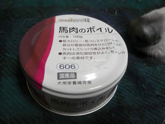 P1050508.jpg