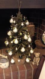 2012Novクリスマスツリー