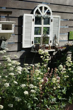 モリモリ花壇