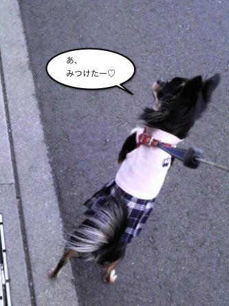 2011030405.jpg