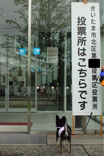 ichi_0072.jpg