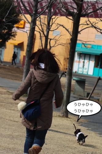 ichi_4063.jpg