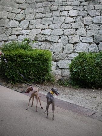 石垣が有名なところです。