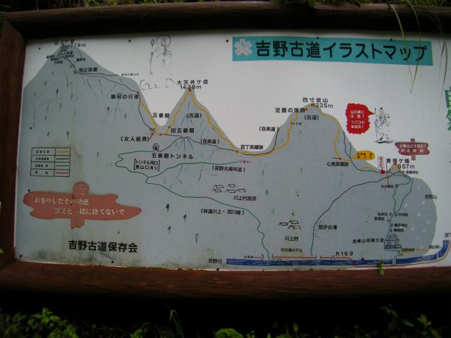 DSCN8431.jpg