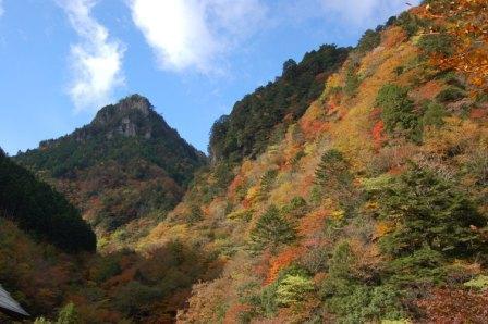 瀬戸川渓谷