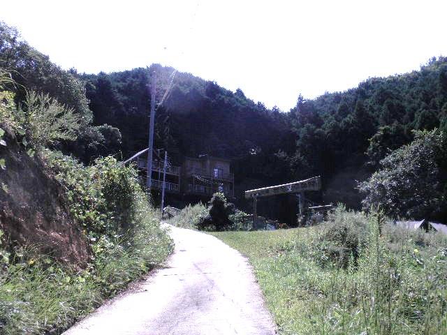 008_20101119080442.jpg