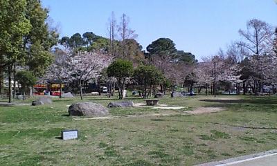 山王公園2010春②