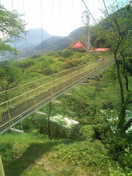 ラクテンチ・大吊橋