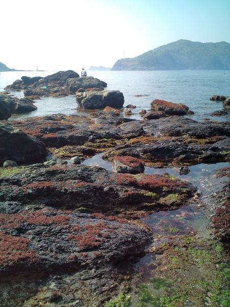 カジヨセの海岸2