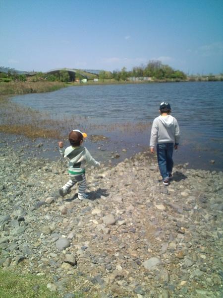グリッピ・池で小石遊び