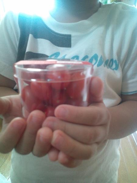 小さなトマト②