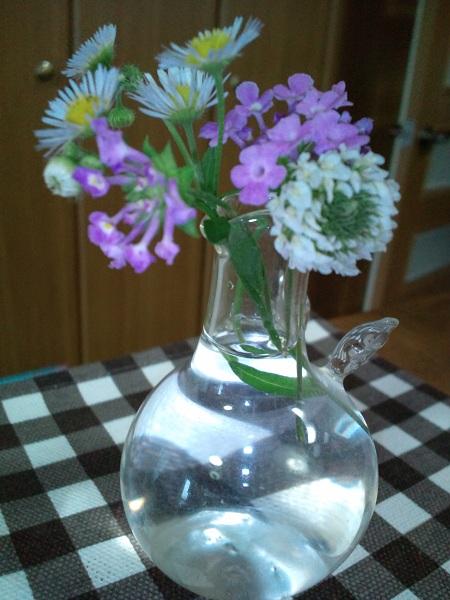 ちぃからの花②