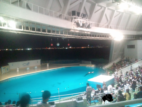 夜の水族館⑦
