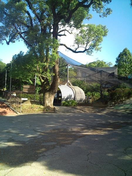 大牟田市動物園入ってすぐ