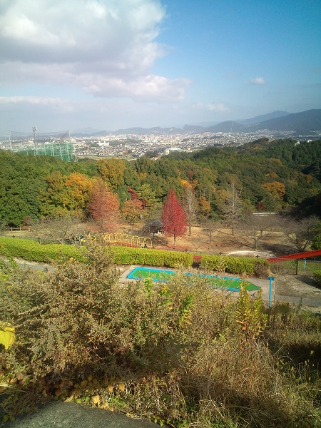 大野城憩いの森③2010秋