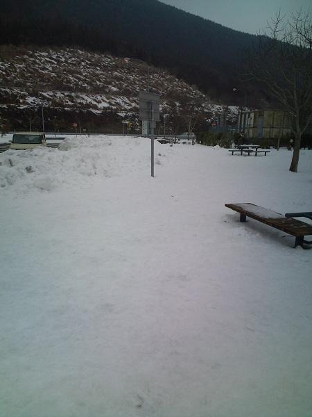 大分道・2011雪①
