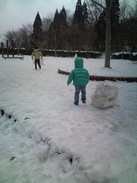 大分道・2011雪②
